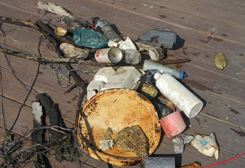 Plastic debris pulled from a Lake Erie marina during a cleanup.