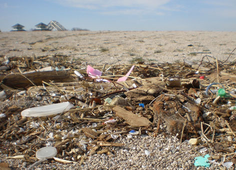 Plastic debris washed up at Maumee Bay State Park on the shores of Lake Erie.