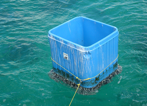 A 4-by-4-foot plastic bin spotted off the eastern coast of Oahu.