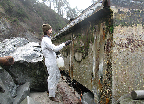 A worker decontaminates the Japanese dock on a Washington coast beach.