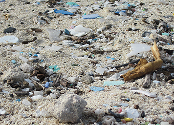Tiny bits of microplastics litter a sandy patch of beach.