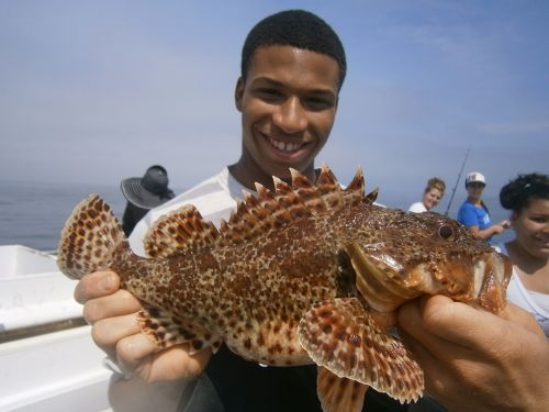 A boy holds up a scorpion fish on a boat.