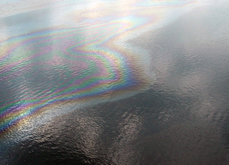 Rainbow sheen.