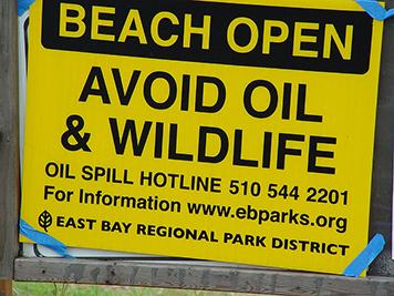 Beach open: Avoid oil and wildlife sign.