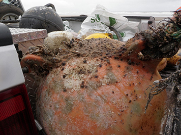 Truck bed full of plastic floats removed from the beach.