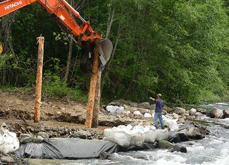 Crews place large wood material which will become engineered log jam habitat for