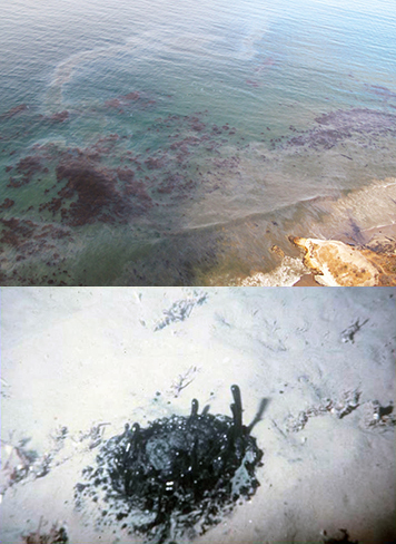 Top: Oil on ocean surface. Bottom: Multiple seeps release oil on seafloor.
