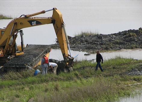 Workers and a crane restoring a wetland in Louisiana.