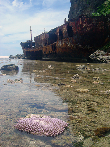 Large rusted out ship in shallow water surrounded by corals.