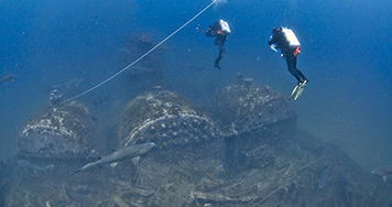 Divers and sharks swim around the shipwreck site of the Dixie Arrow.