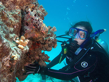 A student diver takes a break to admire a frogfish.