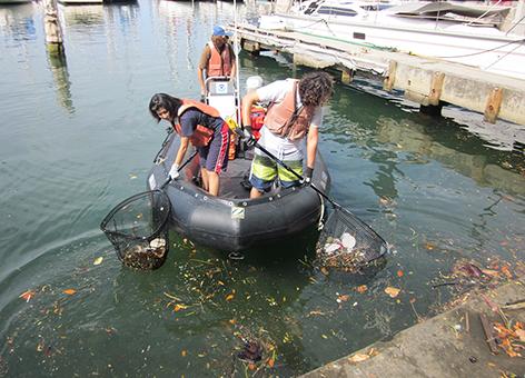 Volunteers in a boat pull debris from the waters of Honolulu.