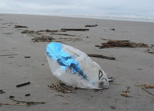 Blue and white mylar balloon on beach.