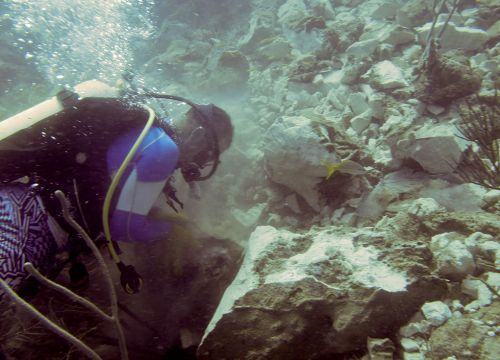 Scuba diver underwater near rocks.