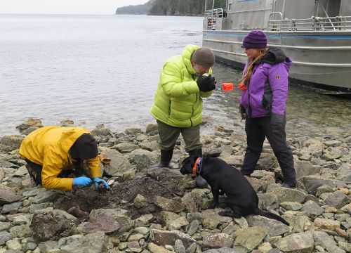 Three people on rocky shore with black dog. Image credit: NOAA.