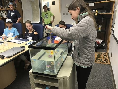 Girl in classroom pouring liquid into fish tank. Image credit: NOAA.