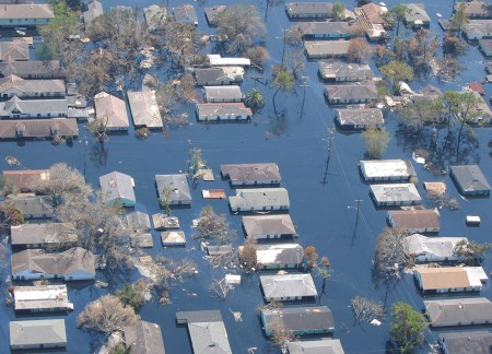 Houses, trees, and powerlines in a New Orleans neighborhood flooded by Hurricane