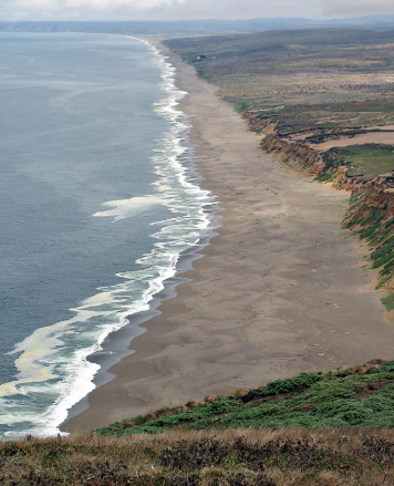Photo: The long shoreline of Point Reyes Beach.