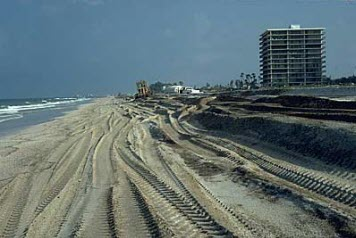 Beach with heavy equipment tracks.