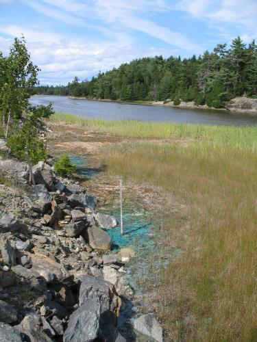 Photo: Green copper seepage into an estuary