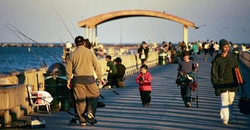 Photo: Several recreational fisherman on a pier.