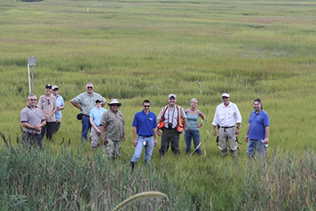 The natural resource trustees celebrate the restoration of Slough's Gut Marsh in August 2013.