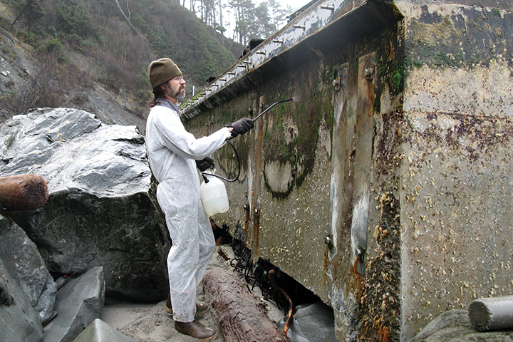 In an effort to reduce the spread of possible marine invasive species, a worker decontaminates the Japanese dock which beached on Washington's Olympic Peninsula in December 2012.