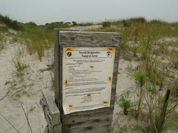 Coastal dune habitat and sign for wildlife conservation area on New Jersey coast.