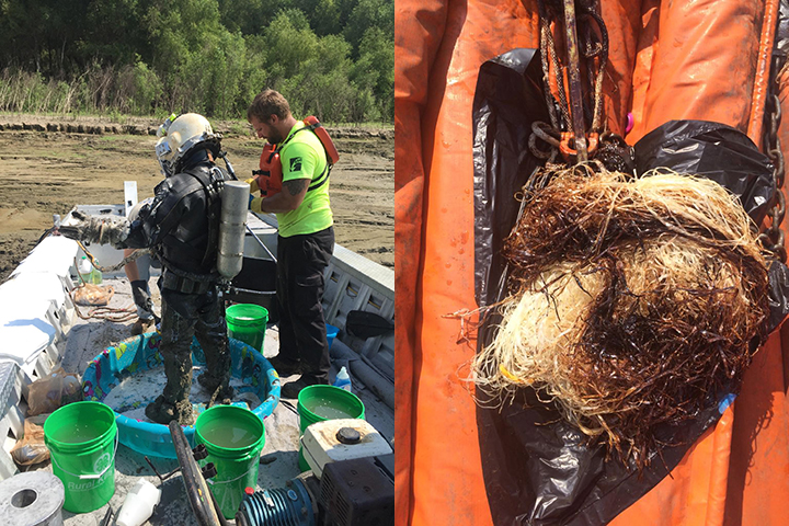 Left: A professional diver gets cleaned up on a boat. Right: Oiled pom pom on top of orange boom.