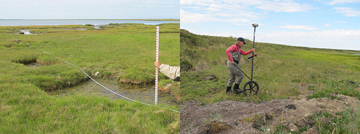 Left: Person's arm holding a measuring stick and tape over a marshy landscape. Right: Woman wheeling survey equipment across a grassy landscape.