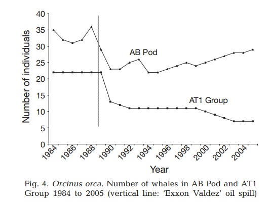 Graph of killer whale populations exposed to oil after the Exxon Valdez spill.