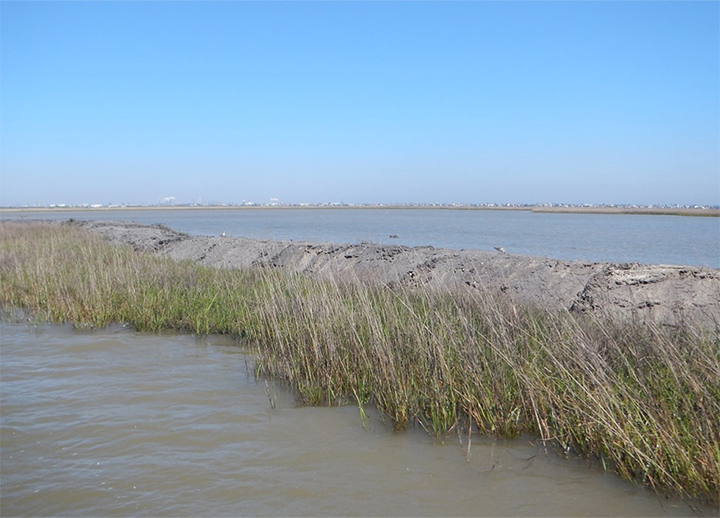 Small levee of sediment and grass in a marsh.