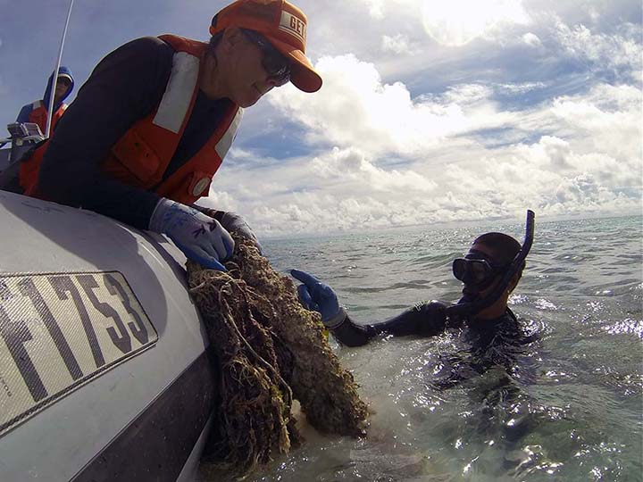 Person pulling bio-fouled net out of water into boat with diver's help.
