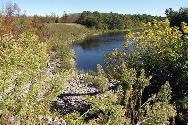 Restoration projects for the St. Lawrence River environment will benefit natural and cultural resources as well as increase the public's ability to boat, fish, and view wildlife.