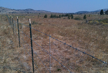 Barbed wire fence across sagebrush steppe habitat.