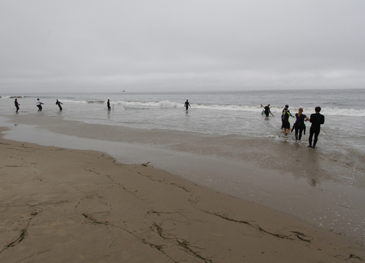 Ten people stand in the beach surf pulling a seine net to shore.