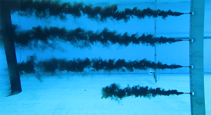 Four black plumes of dispersed oil are released underwater onto long plates of baleen moving behind the applicator.