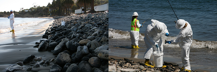 Left: Scientist fishing for samples on a cobble beach with a bucket. Right: Two people in tyvek suits putting a fish in a bucket while someone fishes behind them.