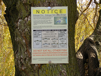 Fish consumption advisories, as seen posted here along the river, have been in place on the Sheboygan River since 1979.