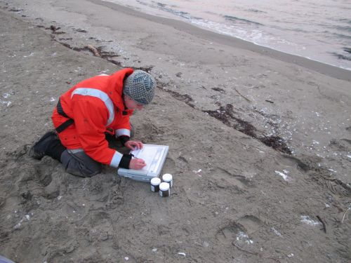 Woman crouched on a beach, working.