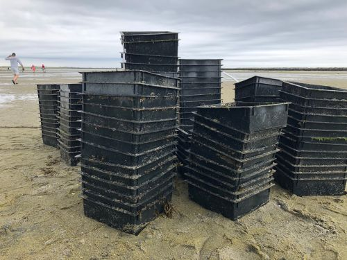 Plastic, large plastic bins stacked on a beach.