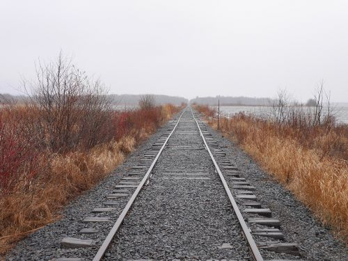 Railroad tracks receding into the distance