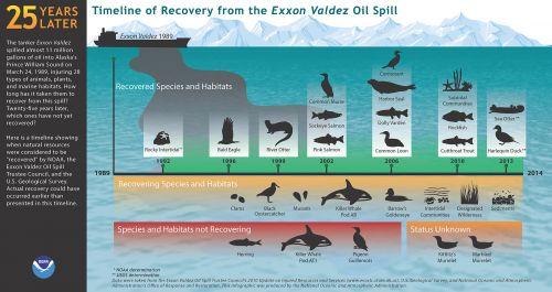 Timeline against illustration of ship spilling oil.