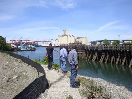 Scientists standing on the bank of the Duwamish River in Seattle.