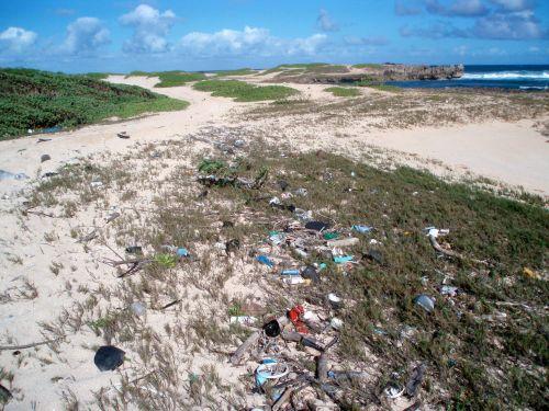 Littered beach in Hawaii.