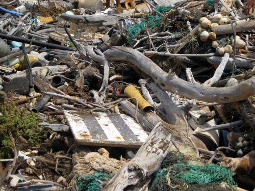 Marine debris and driftwood on Hawaii beach.