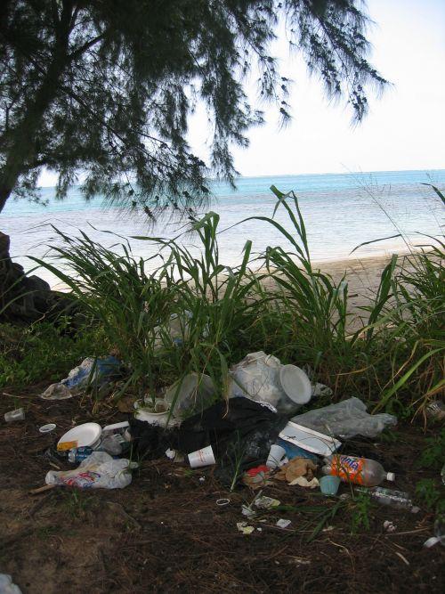 Beach litter in Puerto Rico.