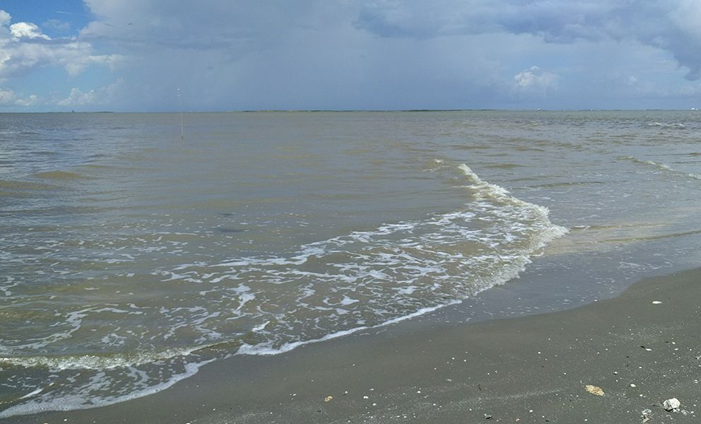 View of water's edge from a beach.