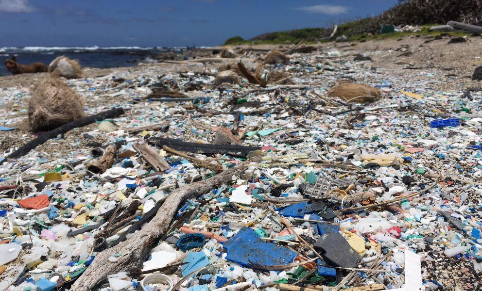 Marine debris littering a beach.