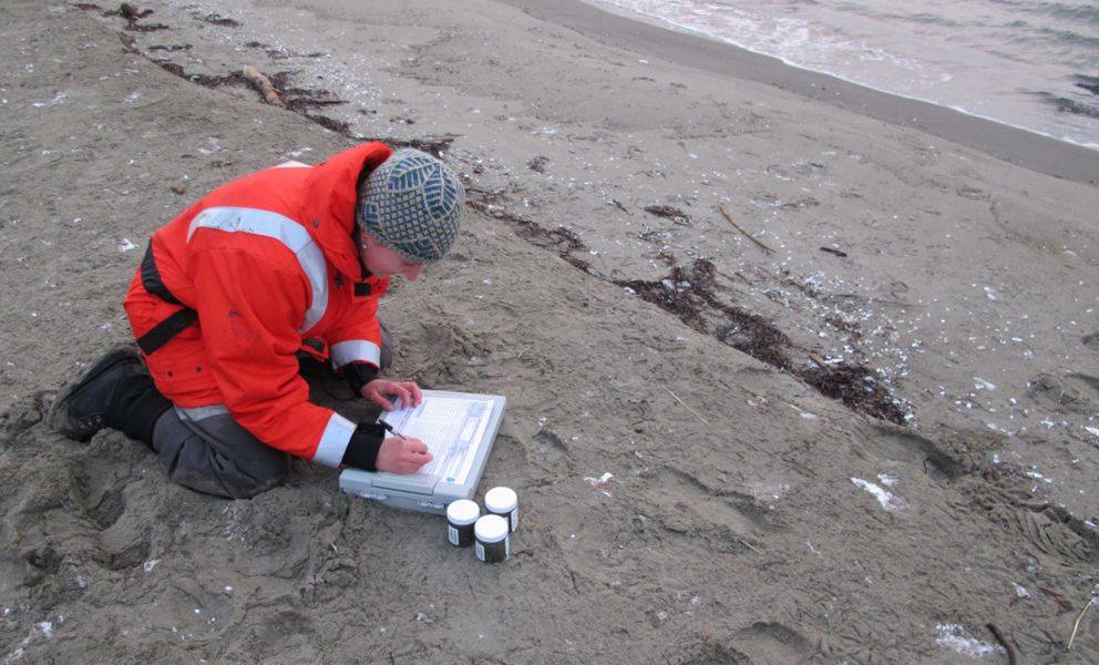 Scientist recording information on a data sheet on an Arctic beach.